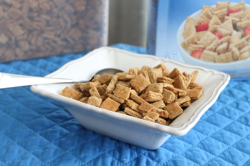 Oatmeal Squares Cereal (26)