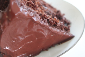 Deluxe Chocolate Cake Mix (15)