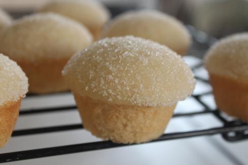 Sugar Donut Muffins (9)