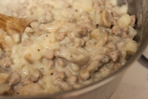 Homemade Hamburger Helper (22)