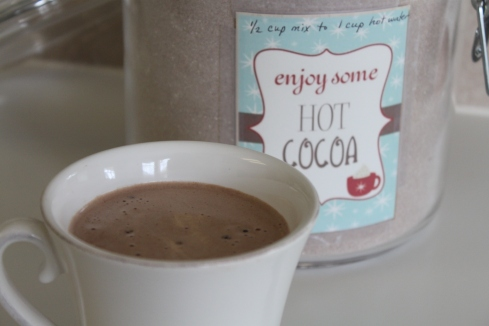 Homemade Instant Hot Cocoa Mix (1)